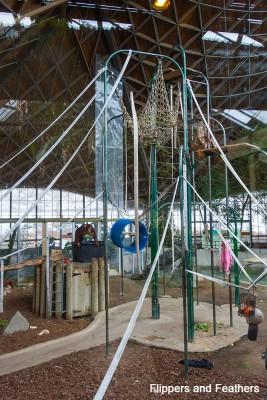 Toronto Zoo FNF Orangutan habitat