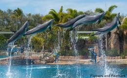 Facility Spotlight: Sea World Gold Coast (Australia)