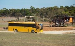 Facility Spotlight: Monarto Zoo (South Australia)