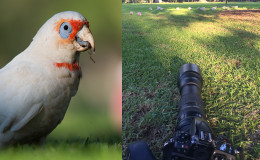 iPhoneographers: Get Real, Or Get A Real Camera