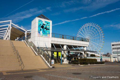 FNF Nagoya 03